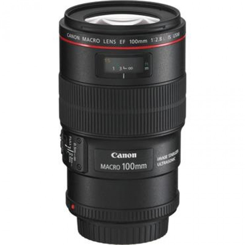 canon ef 100mm f2 8 l macro is usm lens. Black Bedroom Furniture Sets. Home Design Ideas